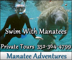 Manatee Tours