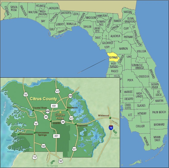 Citrus County Map : Homosa Florida on suncoast parkway map, bradenton florida map, delaware florida map, withlacoochee river florida map, levy county florida map, pasco county florida map, saint johns county florida map, brevard county florida map, clay county florida map, hernando county map, st. johns river florida map, polk county florida map, west coast florida airports map, hernando florida map, lafayette county florida map, homosassa river florida map, lecanto florida map, bay county fl section map, winter park florida map, city island florida map,